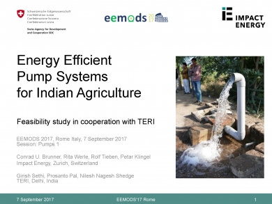 """Energy Efficient Pump Systems for Indian Agriculture"" (EEMODS'17/ppp)"