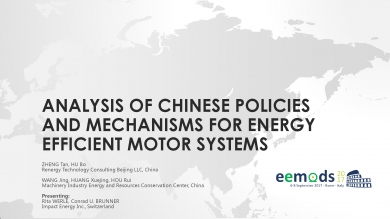 """Analysis of chinese policies and mechanisms for efficient motor systems"" (EEMODS'17/ppp)"