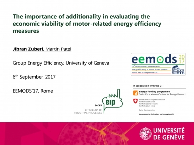 """The importance of additionality in evaluating the economic viability of motor-related efficiency measures""  (EEMODS'17/ppp)"